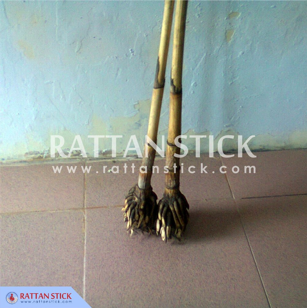 MANAU ROOT RATTAN FOR WALKING STICKS