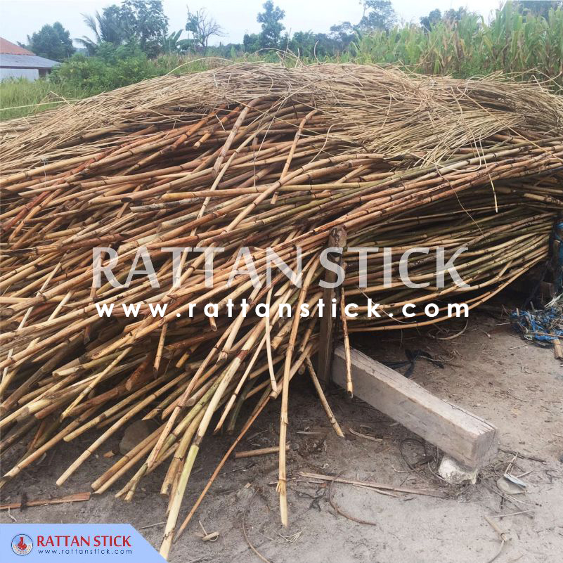Rattan row materials for Rattan walking sticks etc